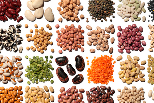 Ejemplos de legumbres