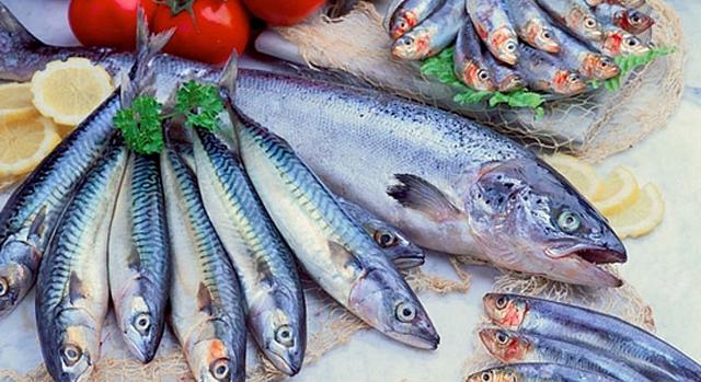Ejemplos de pescado azul