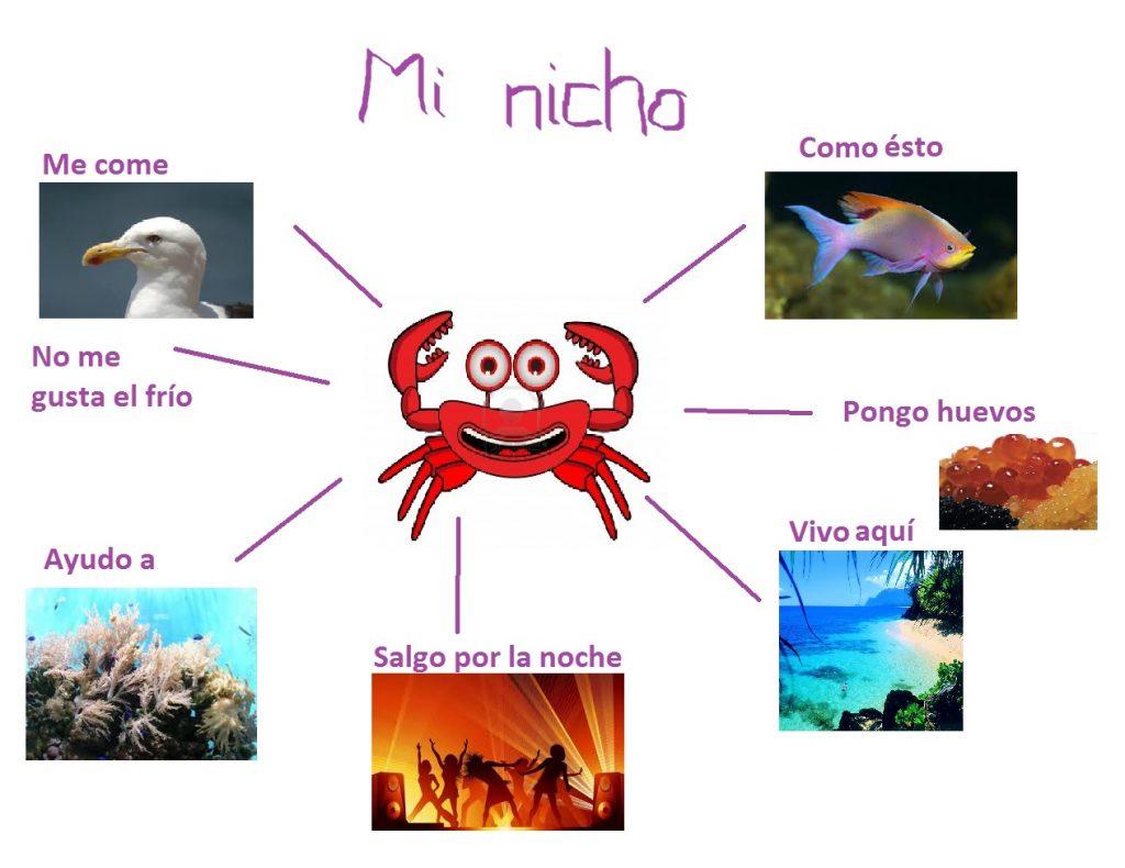 Ejemplos de nichos ecológicos