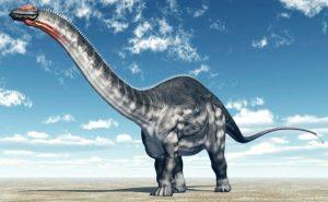 Ejemplos De Dinosaurios Herbivoros Los dinosaurios herbívoros formaron parte importante de la historia y aunque no lo creas, estos dinosaurios eran muy distintos a los carnívoros. ejemplos de dinosaurios herbivoros